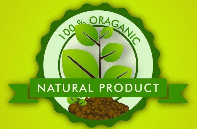 Choosing best organic shampoo