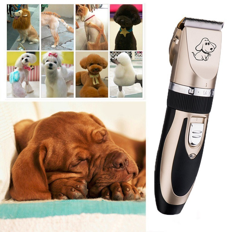 Dog clippers vs mens hair clippers hair clipper reviews and dog hair clippers vs men hair clippers solutioingenieria Images