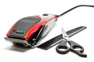 Wahl Professional Peanut Clipper/Trimmer Review